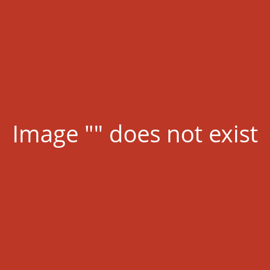 Speedman Box - Endlos Packpapier